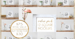 Value Pack Bundle: 12 Square Mockups