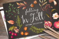 Hand Drawn Autumn Collection